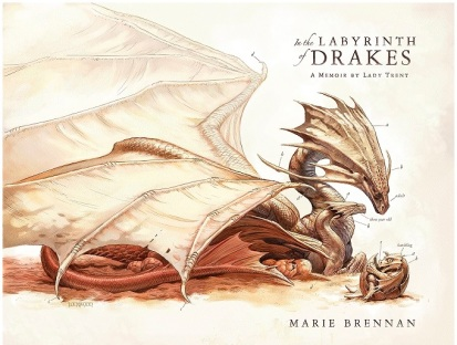 In the Labryinth of Drakes Bk4.jpg